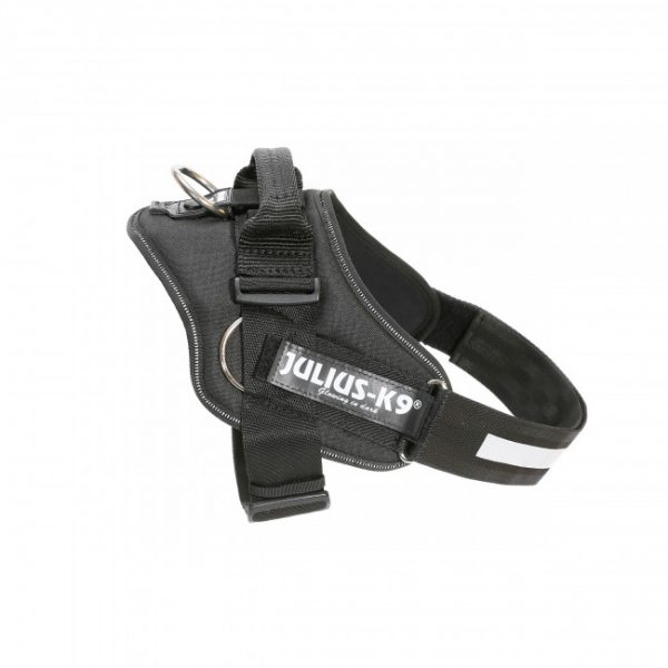 Julius K9 NZ IDC Powerharness with side-rings