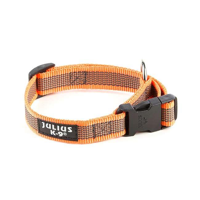 Julius K9 NZ Color & Gray collar in orange