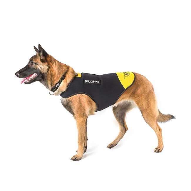 Julius K9 NZ IDC Neoprene Jacket on dog