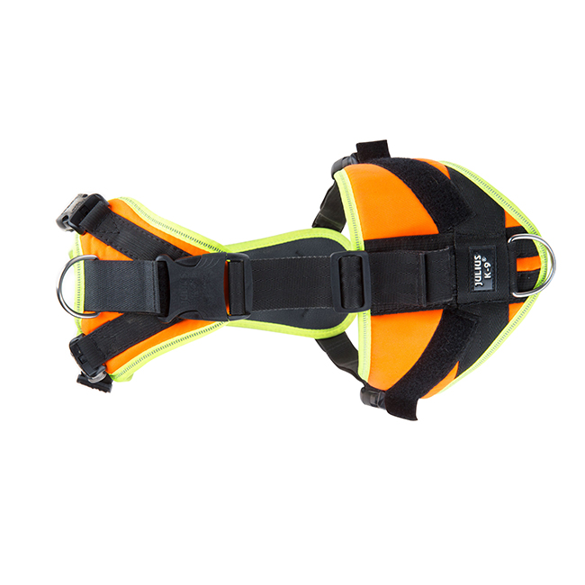 Top view of Julius K9 Mantrailing Outdoor Dog Harness