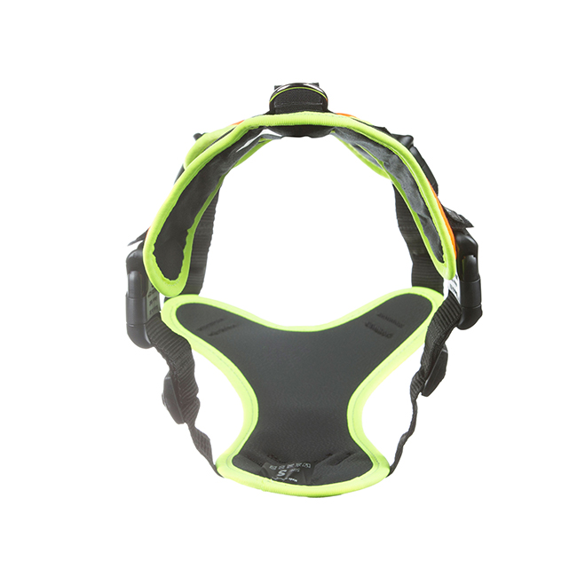 Rear view of Julius K9 Mantrailing Outdoor Dog Harness