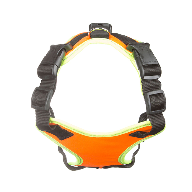 Front view of Julius K9 Mantrailing Outdoor Dog Harness