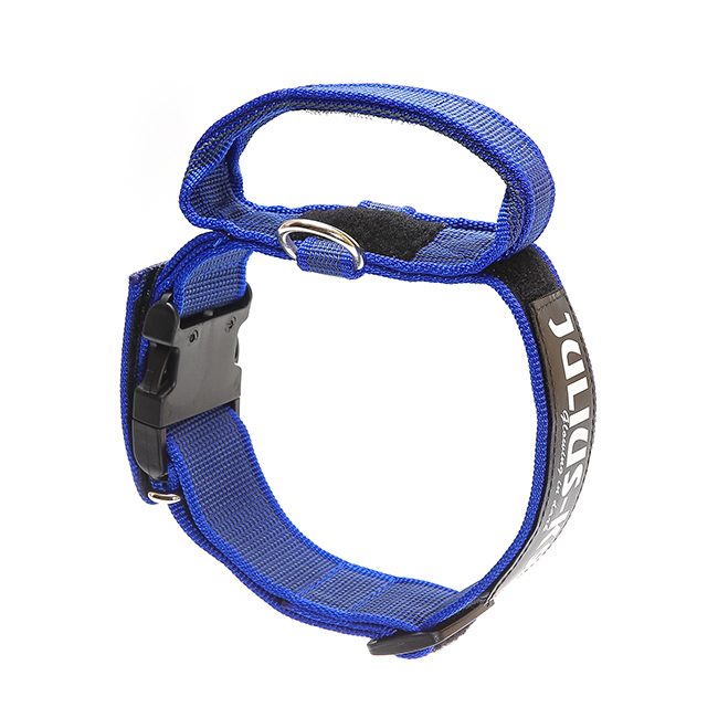 Julius K9 Color and Gray collar with closable handle in blue