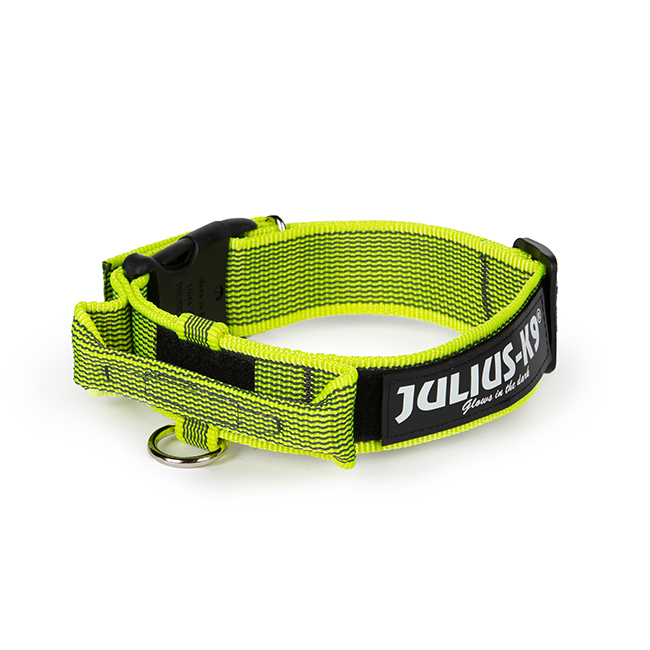 Julius K9 Color and Gray collar with closable handle in neon