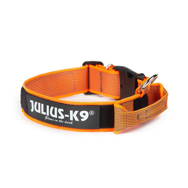 Julius K9 Color and Gray collar with closable handle in orange