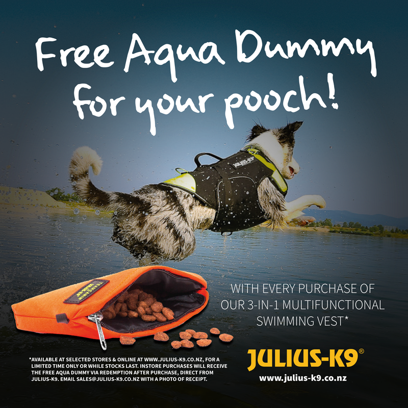 Dog jumping into water chasing Aqua Food Dummy with the IDC Multifuncitonal Dog Vest 3in1 on