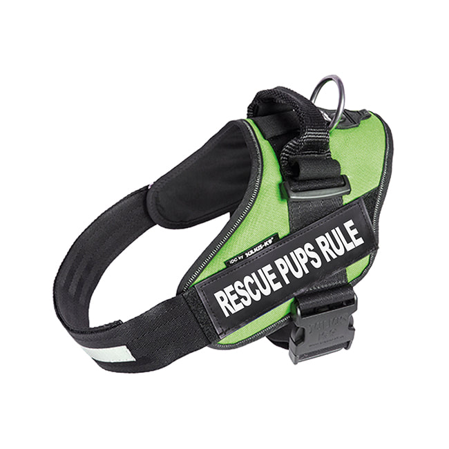 Rescue Pups Rule custom label on green Powerharness