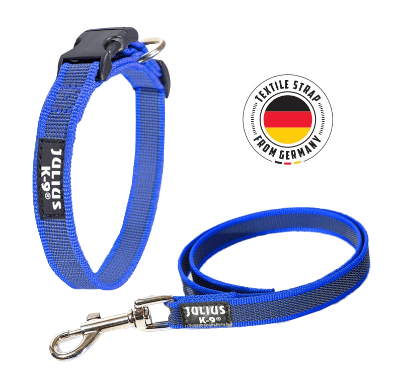 The Julius-K9 Color & Gray Collar and Leash in Blue
