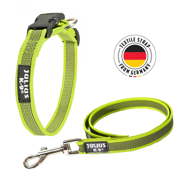 The Julius-K9 Color & Gray Collar and Leash in Neon