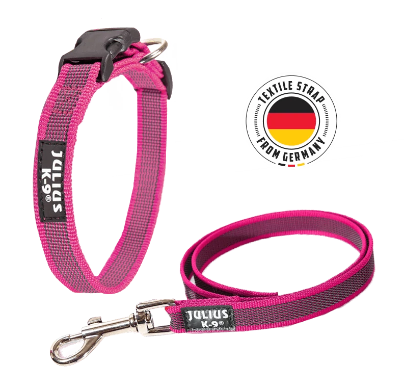 Julius-K9-Color-And-Gray-Family-pink