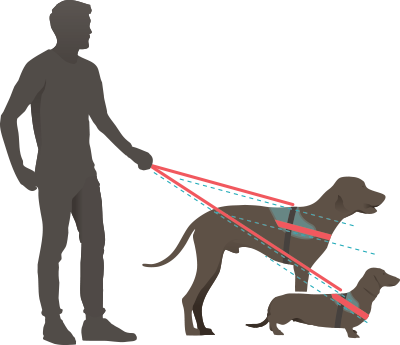 Diagram showing Julius K9 IDC Power Harness is designed for each dog size