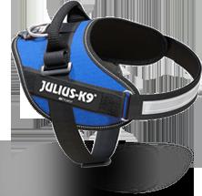 Blue IDC Power harness