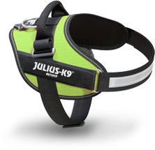 Green IDC Power harness