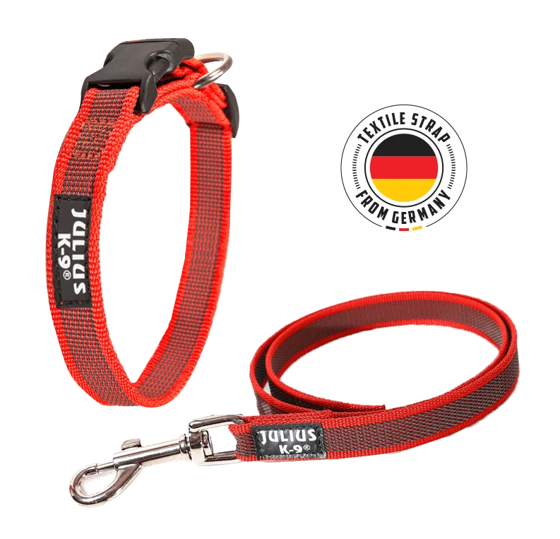 The Julius-K9 Color & Gray Collar and Leash in red
